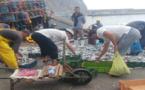 """بالصور.. انهيار """"تاريخي"""" لأسعار السردين وفائض مراكب الصيد بالحسيمة يوزع بالمجان"""
