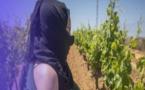 القضاء الإسباني  يفتح ملف العاملات المغربيات وتعرضهن لـ'الانتهاكات الجنسية' ويأمر بإعتقال شخصين