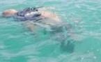 جثة مغربي غارقة في المياه الجزائرية قرب السعيدية تعقد مسطرة انتشالها