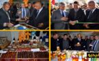 بحضور الكاتب العام لوزارة الفلاحة.. عامل الدريوش يفتتح فعاليات المعرض الجهوي للمنتجات الفلاحية