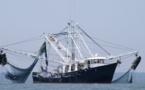 الاتحاد الأوروبي يصادق على القرار المتعلق بالتوقيع على اتفاق الشراكة في مجال الصيد البحري المستدام مع المغرب