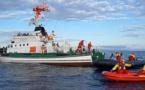 """بعثة علمية تحل بسواحل الحسيمة لدراسة سلوك """"النيكرو"""" من أجل إنهاء معاناة الصيادين"""