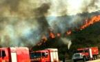 مندوبية الغابات: 1660 هكتارا تعرضت للحرائق خلال سنة 2018