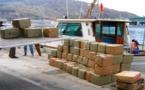 كانت في الطريق إلى اسبانيا.. الدرك البحري يحجز 100 كيلوغرام من الشيرا مخبأة في قارب صيد تقليدي