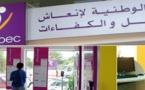 يهم حاملي الشهادات بالريف.. الأنابيك تبحث عن أساتذة للغة العربية للتدريس بالإمارات