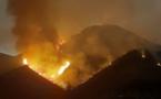 هيئات مدنية بتفرسيت تحمل السلطات مسؤولية الحريق الذي أتلف الثروة الغابوية للجماعة