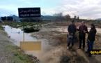 شاهدوا بالفيديو.. فلاحون بالدريوش  يستعدون لحرث حقولهم الزراعية بعد التساقطات المطرية الاخيرة