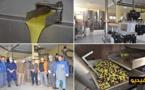 ربورتاج يسلط الضوء على مراحل جني الزيتون وعصره وتسويقه بمعصرة الزيتون ببني سيدال
