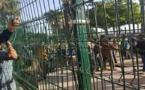 مهاجرون أفارقة يهجمون على معبر فرخانة لاقتحام مليلية وهيئة حقوقية تصف تدخل الأمن بالعنيف + صور