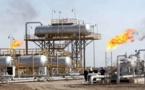 المغرب يرخص لشركة بريطانية لدراسة الأثر البيئي لمشروع تسويق الغاز من جهة الشرق