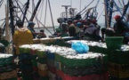 تعليمات لمراكب الصيد بعدم إنتشال الجثث من البحر لتفادي انتقال كورونا