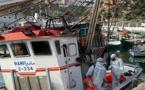 الحسيمة... قطاع الصيد البحري يواصل الاشتغال بانتظام في احترام تام لتدابير الوقاية من الجائحة