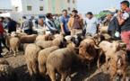 سوق المواشي بقرية أركمان يتحول إلى أوحال وبرك مائية مع تسجيل انخفاض في أثمان الأضاحي
