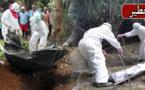 """الجهة الشرقية والريف أشد المناطق خطرا من فيروس """"إيبولا"""" القاتل لهذا السبب"""