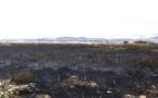 حريق بالقرب من مطار الحسيمة يلتهب 5 هكتارات
