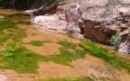 """ضفاف """"اغزار نرعراصي"""" بقرية لعسارة.. حقول زراعية مغلالة تعاني من غياب التجهيزات الهدروفلاحية"""