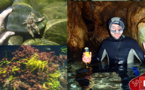 مراد الطاهر غواص يوثق لمشاهد نادرة ورائعة للتنوع البيولوجي الذي تزخر به سواحل الريف