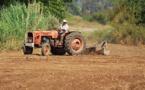 المندوبية السامية للتخطيط: محصول الحبوب سيتقلص بنسبة %61