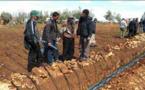 هذه حزمة الإجراءات التي ستتخذها الحكومة بأمر من الملك لمواجهة آثار الجفاف