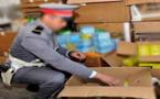 المصالح المختصة تستعد لحملة مداهمة واسعة لمخازن السلع الغذائية بمجموعة من المدن المغربية