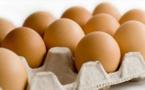 البيض سيعود إلى ثمنه العادي خلال الأسابيع القادمة في حالة التحكم في مرض عقم الدجاج