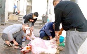 """صحيفة إسبانية: المغرب سيفرض تدابير استثنانية في """"العيد الكبير"""" ورخصة خاصة لنحر الأضحية"""