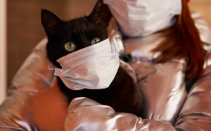 تسجيل إصابة حيوان أليف بفيروس كورونا المستجد